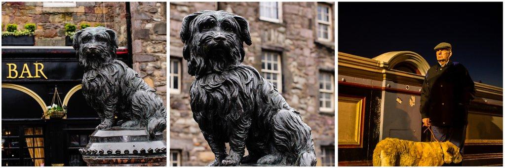 2012-Edinburgh-Hunde.jpg